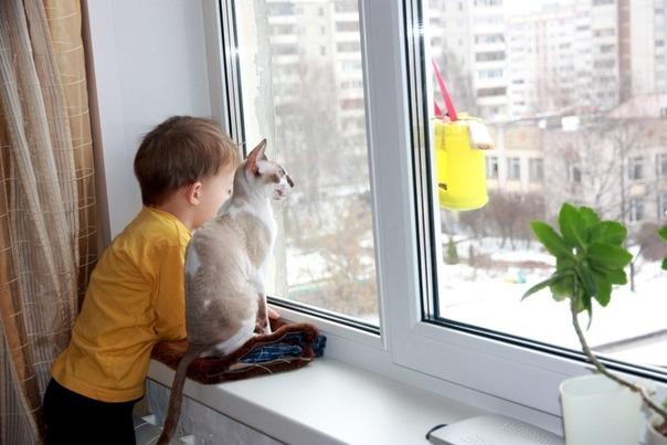 Блокирующие устройства на окна