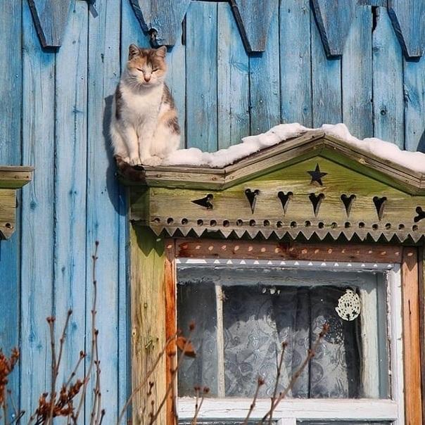 В теплом доме - и на душе хорошо